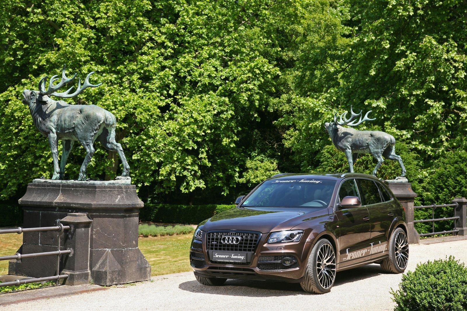 Audi Q5 dostala od Senneru větší výkon a styl 8