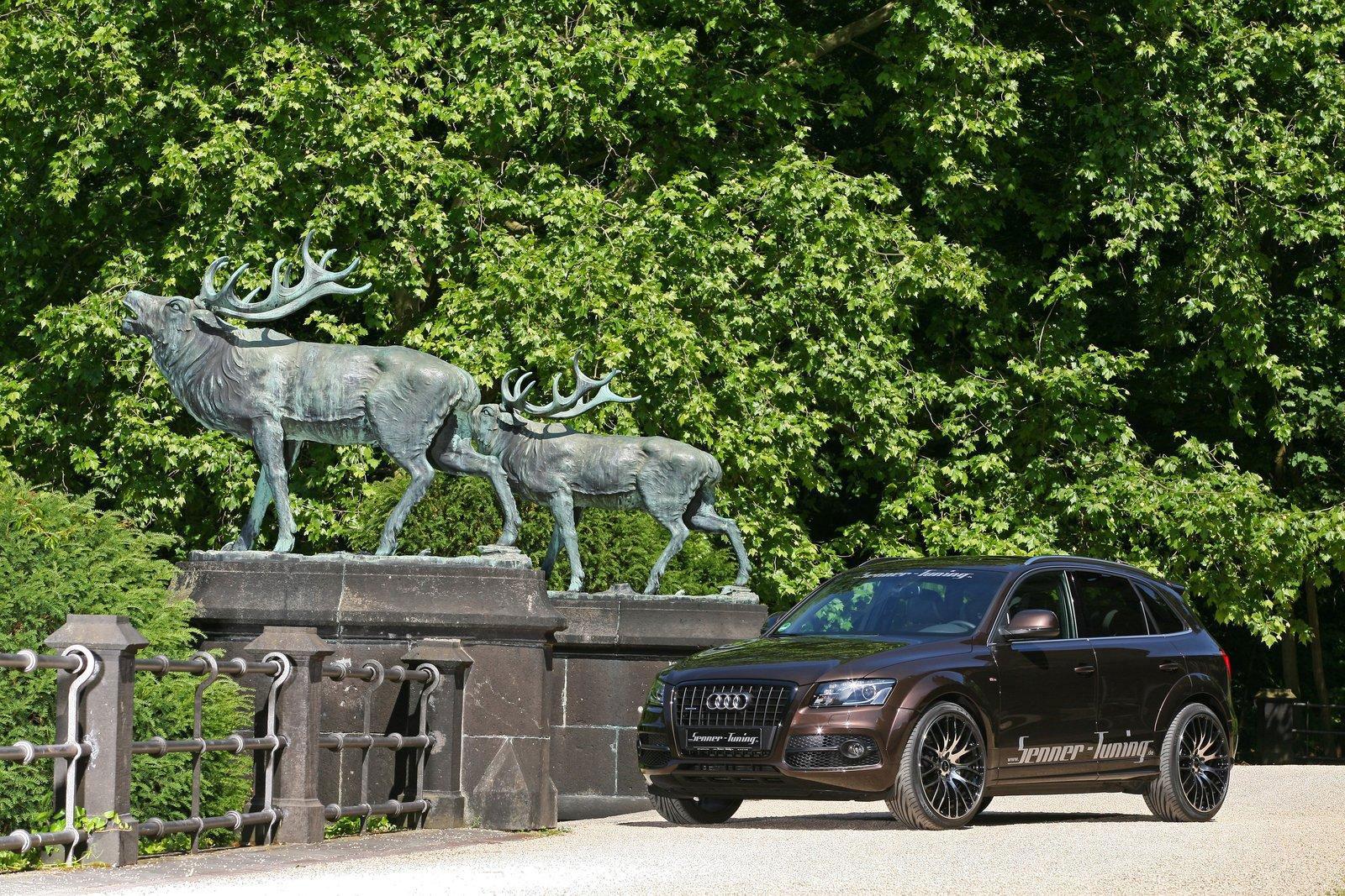 Audi Q5 dostala od Senneru větší výkon a styl 9