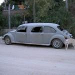 VW Brouk Tuning č.2