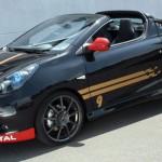 Renault Wind ve stylu F1