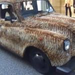 Chlupatý Londýnský taxík