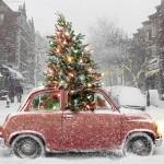 8x vozů ideálních na přepravu vánočního stromu