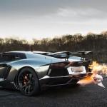 Grilování krocana s Lamborghini Aventador (video)