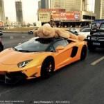 Převoz plyšového medvěda v Lamborghini Aventador