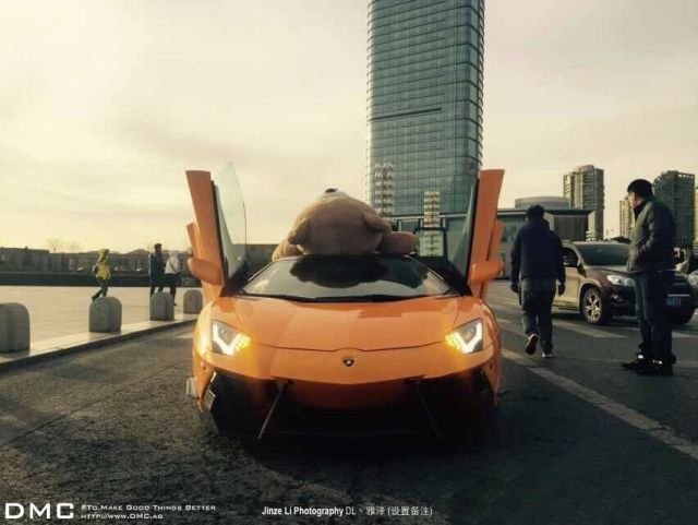 lamborghini-aventador-wearing-a-teddy-bear-on-its-roof-stops-traffic-in-china_9